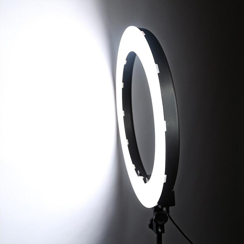tienda anillos de luz